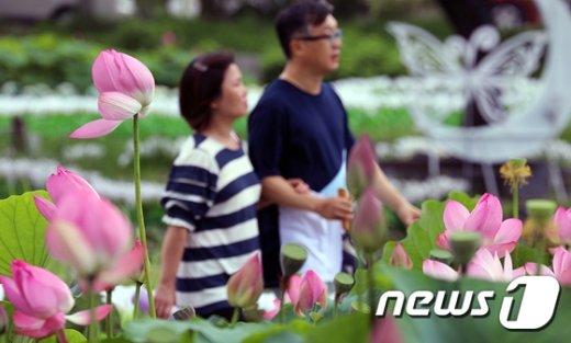[사진]손 꼭 잡고 연꽃 구경
