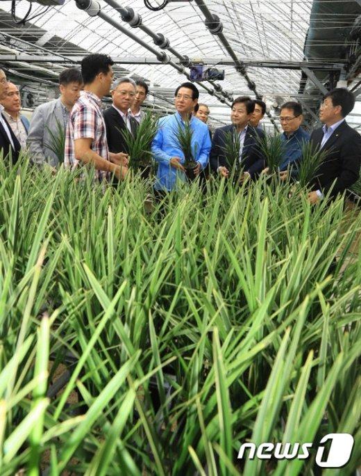[사진]김영란법 이후 화훼농가 어려움 청취하는 김영록 농림축산식품부 장관