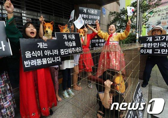 [사진]'개농장 개를 해방하라'