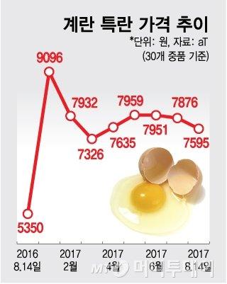 '살충제 쇼크' 계란값 얼마나 오를까