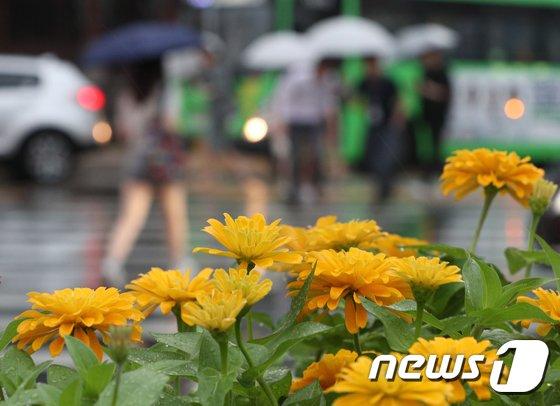 비가 내리자 우산을 쓴 시민들이 퇴근길을 재촉하고 있다.  © News1 신웅수 기자
