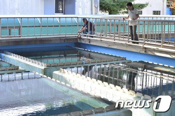 경기 남양주시 화도정수장에서 직원들이 수질 점검을 하는 모습 (특정 기사내용과 관계 없음) © News1 신웅수 기자