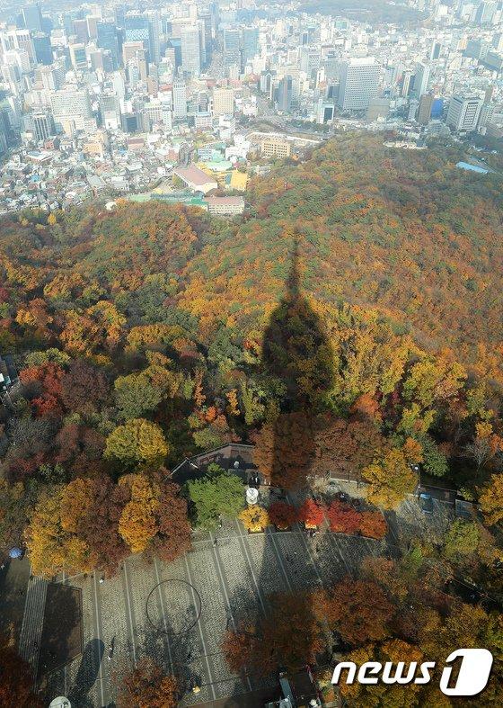 [사진]도심 속 가을