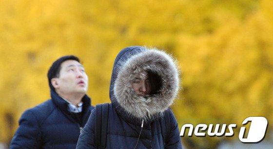 (자료사진) © News1 김명섭 기자