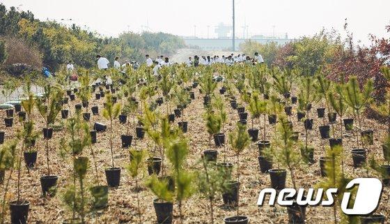 [사진]아이오닉 포레스트 나무 심기 행사