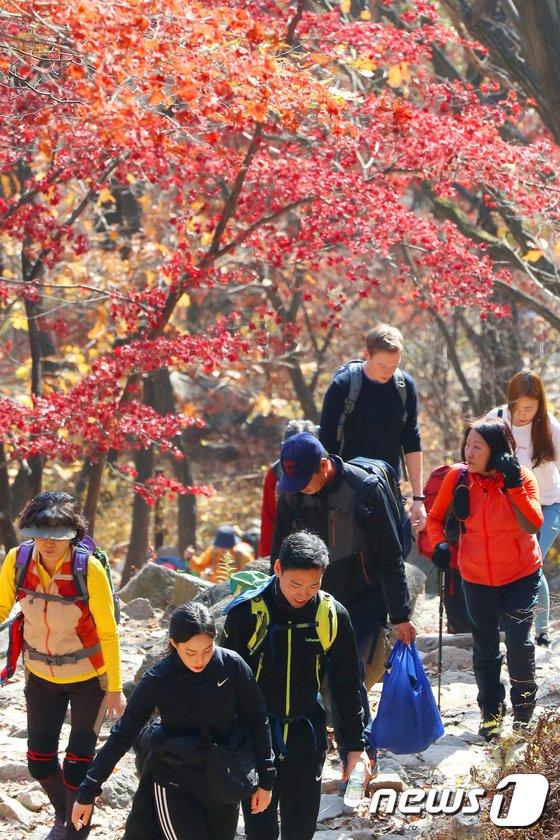 [사진]'가을아 가지마'