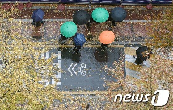 [사진]가을 적시는 비