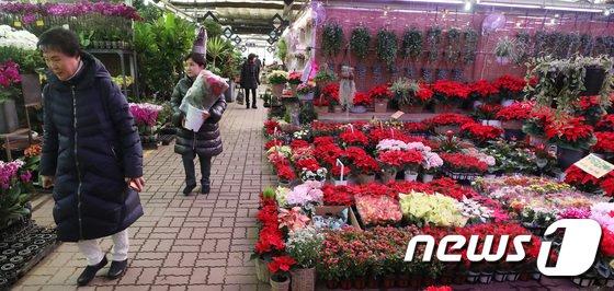 [사진]'분주한 꽃시장'