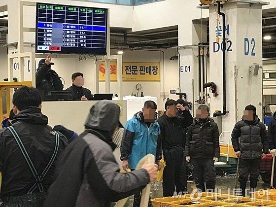 서울 동작구 노량진 수산시장에서 활어 경매가 진행되고 있다. /사진=신현우 기자