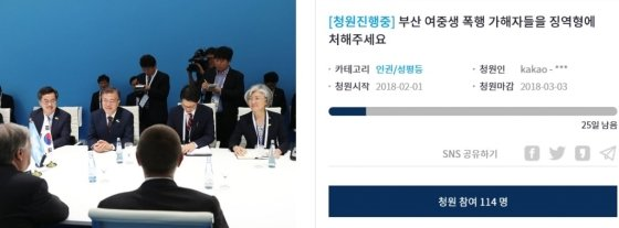 '부산 여중생 폭행사건' 가해자들에 소년보호처분이 내려진 가운데 한 청원자가 처벌을 다시 해달라는 청원을 올렸다./사진=청와대 홈페이지 캡쳐