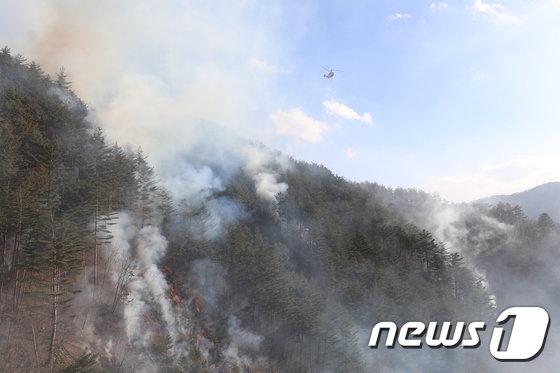 [사진]연기 자욱한 삼척산불