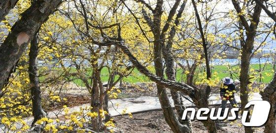 [사진]다가오는 봄, 농사 준비