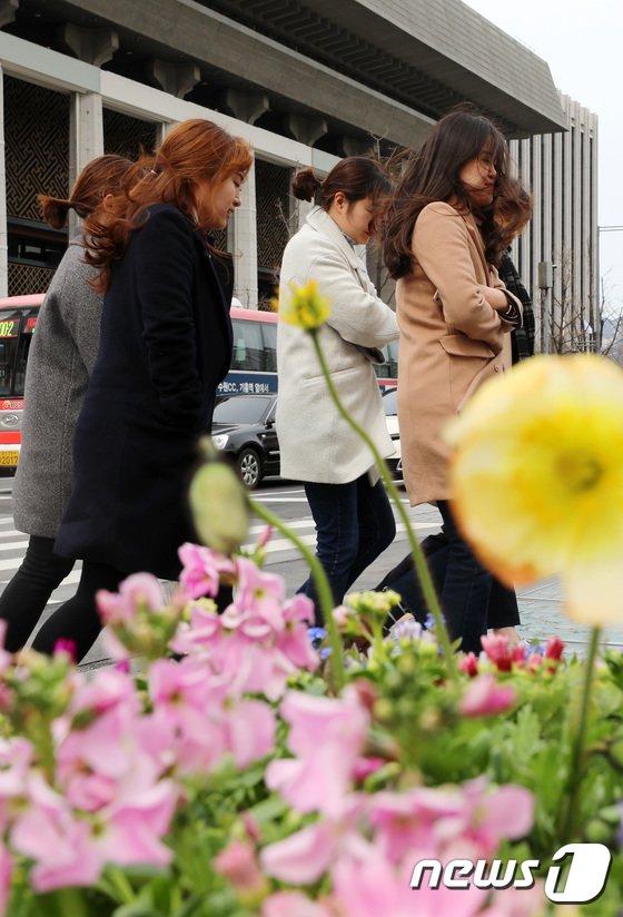 [사진]바람 몰고온 꽃샘추위