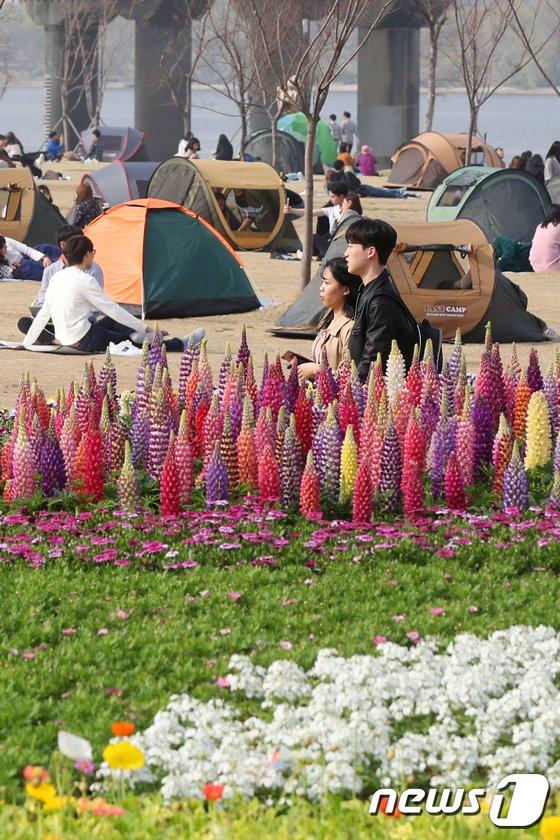 [사진]'봄나들이 가고픈 날씨'