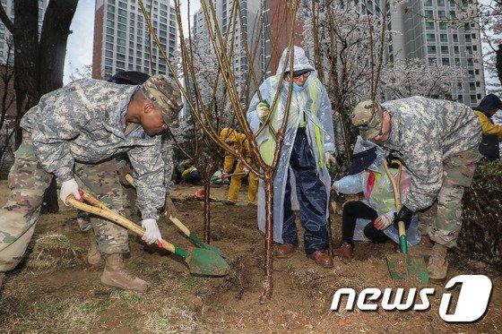 [사진]식목일, 나무 심는 주한미군 장병들