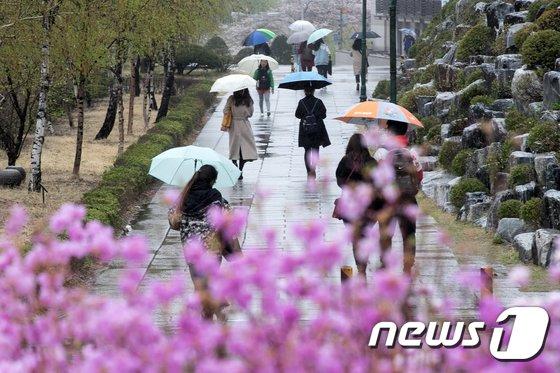 [사진]봄비 내리는 캠퍼스