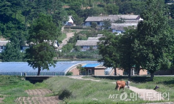 남북적십자회담이 열리고 있는 22일 오전 금강산으로 향하는 기자단 버스에서 바라본 북측 마을. /사진=뉴스1