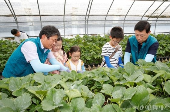 라승용 농진청장(사진 왼쪽)이 지난 달 30일 충남 논산시 금성마을을 찾아 일손이 부족한 한 농가를 찾아 작업을 돕고 있다.