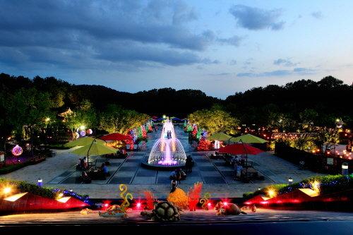 대전 중구에 위치한 대전오월드 야간개장 모습. LED조명이 여름밤을 밝히고 있다. /사진=대전오월드