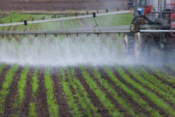 'PLS'란 잔류허용기준이 있는 농약에 대해서는 기준에 따라, 등록되지 않은 농약에 대해서는 0.01ppm 이하만 허용하는 제도. /사진=이미지투데이