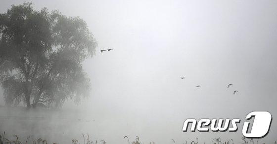 [사진]'물안개가 만든 풍경'