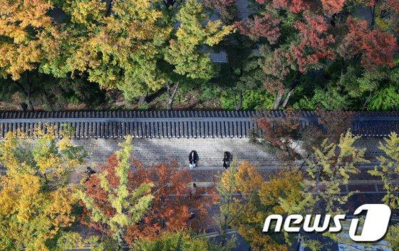 [사진]가을옷 입은 덕수궁 돌담길