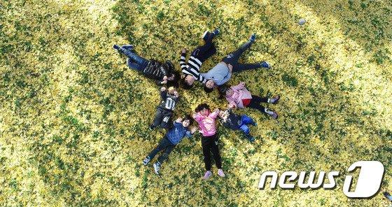 [사진]노란 은행잎에 누워서