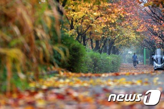[사진]'겨울이 코앞...오늘은 입동