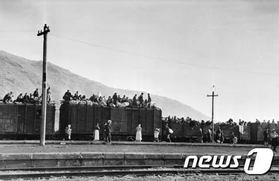[사진]1950년 기차에 올라 탄 피난민들