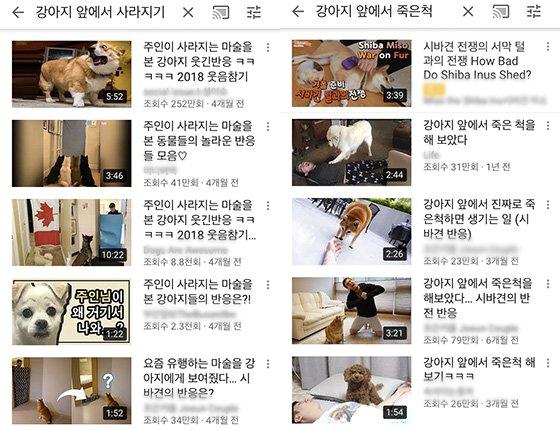 유튜브 검색 화면 캡처.