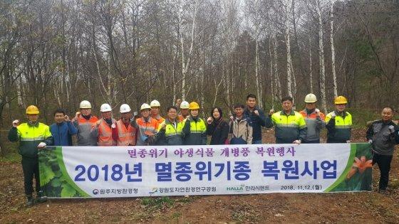 한라시멘트 '석회석 광산 멸종위기 야생식물 복원 행사'/사진제공=한라시멘트