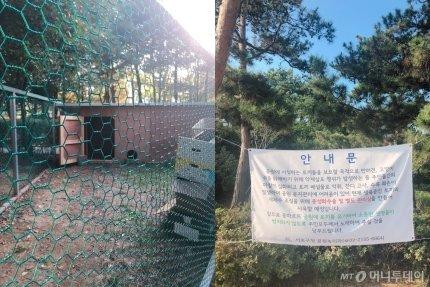 서초구청이 마련한 토끼 방사장의 모습(사진 왼쪽)과 관련 현수막. /사진= 유승목 기자