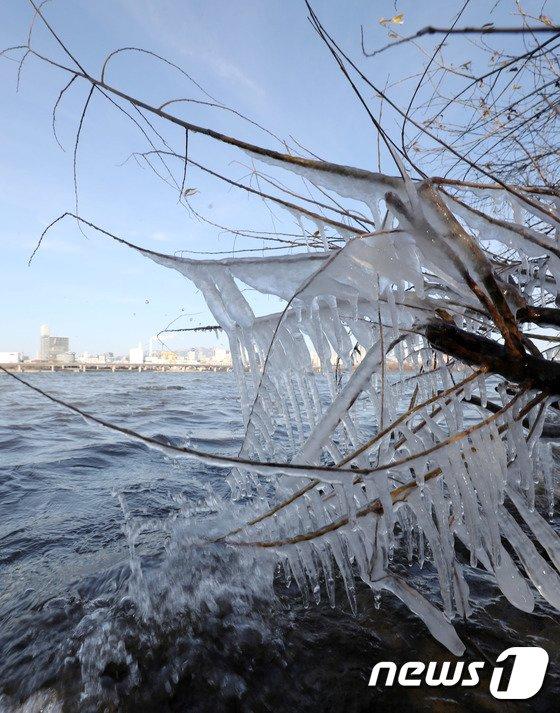 [사진]한파가 만든 얼음조각