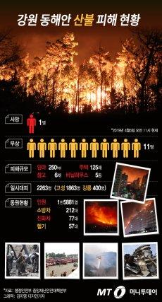 강원 동해안 산불 피해 현황(오전 11시 기준)