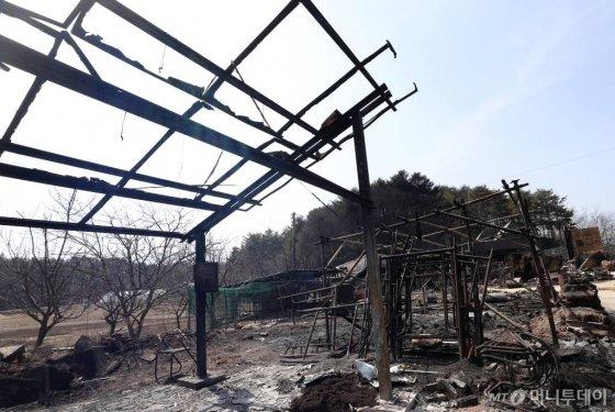 강원 고성 일대에서 발생한 산불 발생 이틀째인 5일 오후 속초 장천마을 인근의 민가가 불에 타 있다.