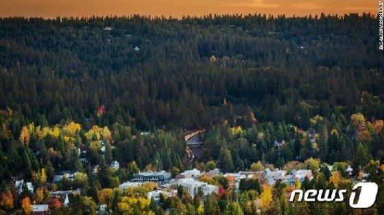 숲으로 둘러싸인 네바다시티 전경 © 뉴스1