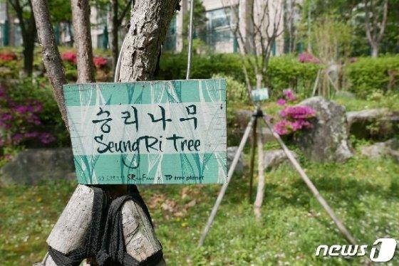 '로이킴숲', '박유천 벚꽃길' 등 사회적 물의의 중심에 있는 연예인의 이름을 사용한 시설에 지방자치단체(지자체)들이 골머리를 앓고 있는 가운데 22일 서울 강남구 역삼동의 한 근린공원에 '승리숲'의 '승리나무'를 표시하는 나무 표식이 설치돼 있다. 2019.4.23/뉴스1 © News1 황덕현 기자