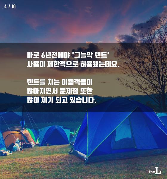 [카드뉴스] 불량 텐트족 'OUT'