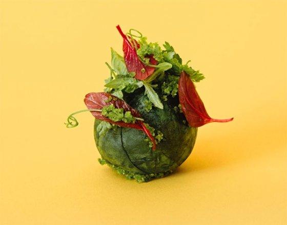 이케아의 외부 실험실 역할을 하는 '스페이스10' 홈페이지에서 갈무리한 식물성고기 미트볼 사진.