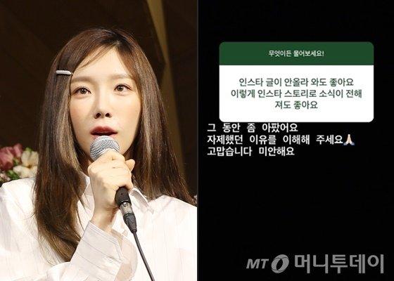 소녀시대 태연이 남긴 인스타그램 스토리 질문 답변/사진=머니투데이DB, 태연 인스타그램