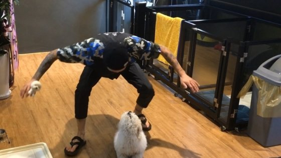 강아지와 놀아주는 성문수 카나비스펫 대표. 강아지에게 신뢰를 얻기 위한 필수 코스다. /사진제공=성문수 카나비스펫 대표