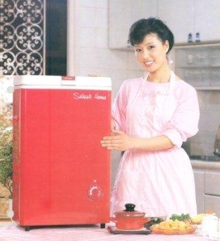 대우전자가 1985년 출시한 김치냉장고 '스위트홈'. /사진제공=대우전자
