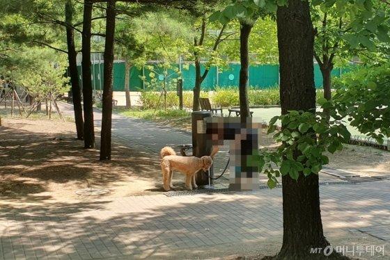 5일 오전 서울 성수구 서울숲에서 한 견주가 반려견과 산책을 하다 물을 주고 있다./사진=한민선 기자