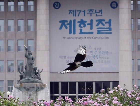 서울 여의도 국회에서 까치가 제71주년 제헌절을 축하하듯 대형 현수막을 지나치며 무공화꽃 위를 날고 있다./사진=뉴시스