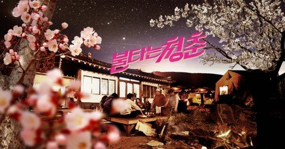 '불타는 청춘' 포스터./사진=SBS 홈페이지