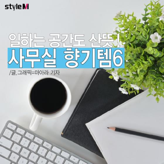 [카드뉴스] 꿉꿉한 사무실…향기롭게 채우는 아이템 6