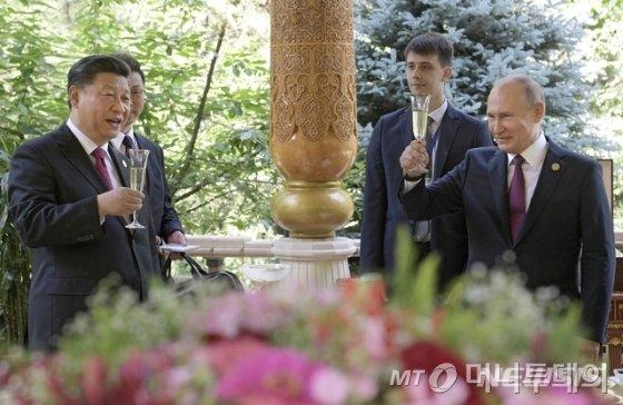 【두샨베=AP/뉴시스】14일(현지시간) 타지키스탄 수도 두샨베의 한 호텔에서 블라디미르 푸틴 러시아 대통령이 시진핑 중국 국가주석과 건배하고 있다.