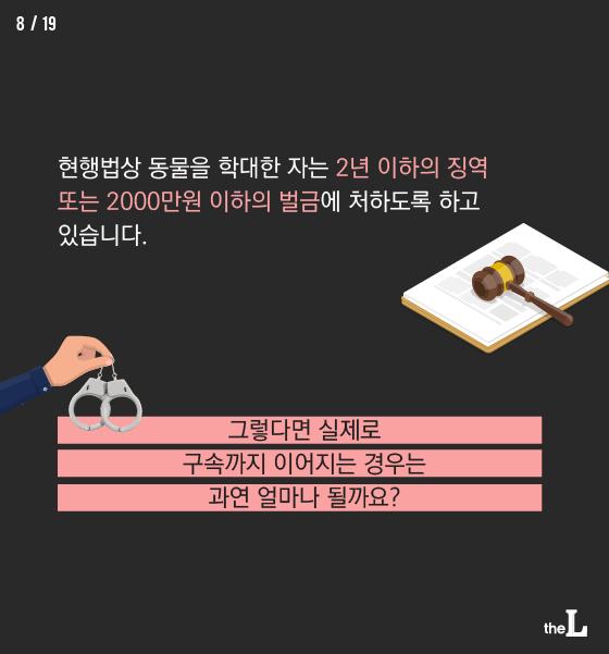 """[카드뉴스] 동물학대 여전 """"솜방망이 처벌"""""""