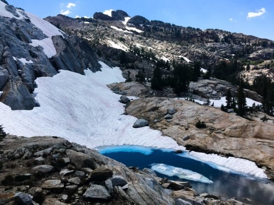 미국 캘리포니아주 요세미티 국립공원 고지대에 쌓여 있는 눈이 분홍빛을 띠고 있다. /사진=요세미티 국립공원 트위터