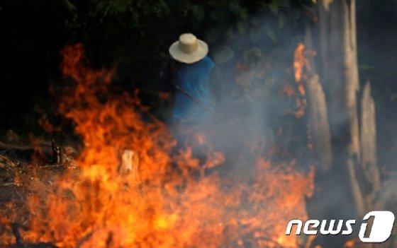 아마존 열대우림 화재. © 로이터=뉴스1